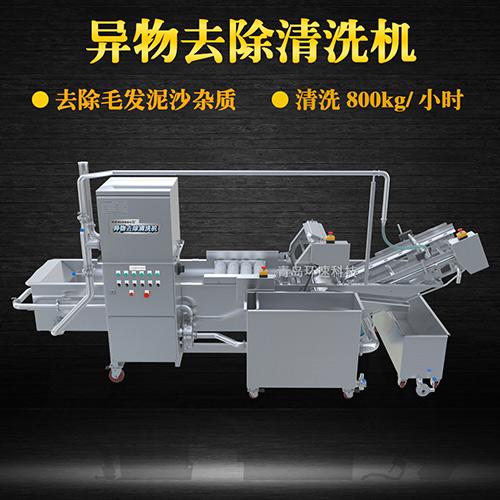 果蔬自动清洗机,清洗800kg小时,果蔬自动清洗机